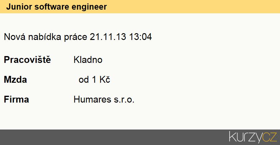 Junior software engineer, Vývojáři softwaru