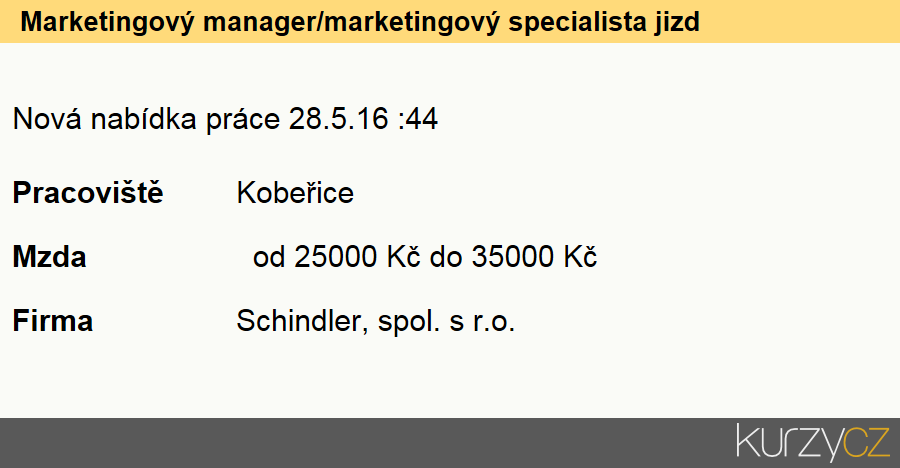 Marketingový manager/marketingový specialista jizdní kola, Specialisté v oblasti marketingu