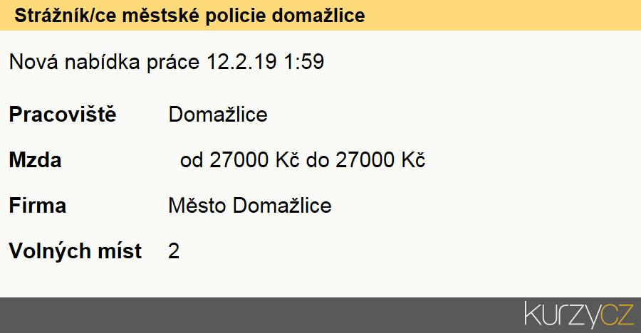 Strážník/ce městské policie domažlice, Strážníci