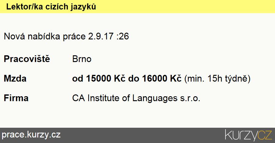 Lektor/ka cizích jazyků, Lektoři a učitelé jazyků na ostatních školách