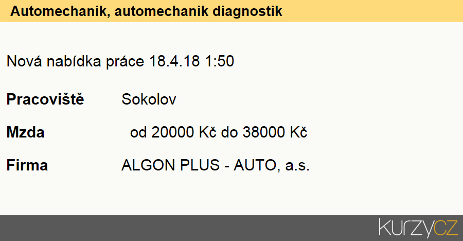 Automechanik, automechanik diagnostik, Mechanici a opraváři osobních automobilů