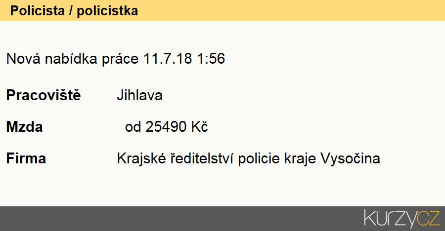 Policista / policistka, Policisté