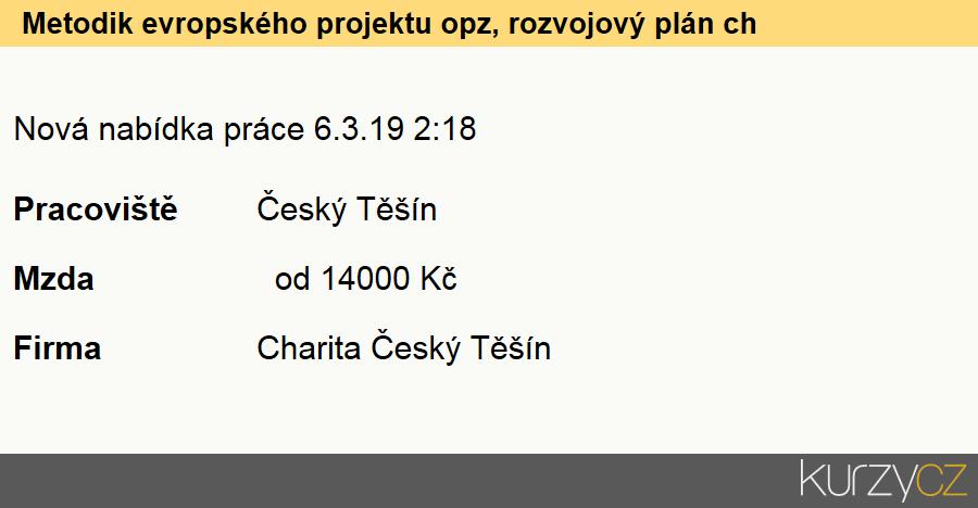 Metodik evropského projektu opz, rozvojový plán charity český těšín, Ostatní úředníci jinde neuvedení