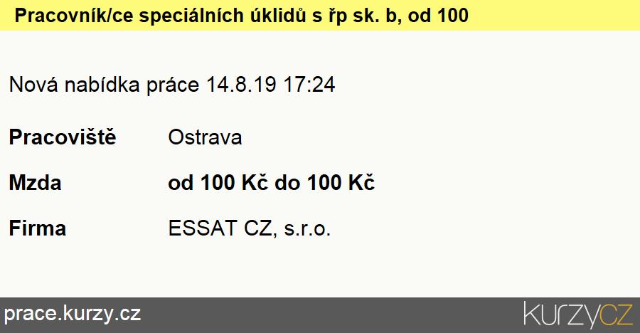 Pracovník/ice speciálních úklidů s řp sk. b, od 100 kč/hod., Ostatní uklízeči a pomocníci